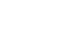 Cani Campioni - Dog web design